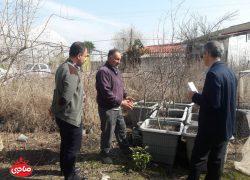 Dr Gholamian's visit, Ramsar's citrus research center, Anarsahebi complex